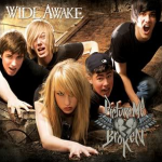 Picture Me Broken - Wide Awake CD Cover